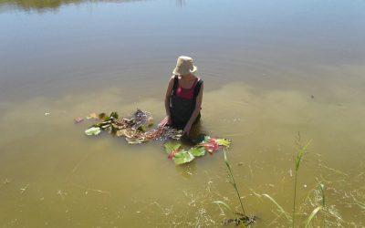 Lago per la fitodepurazione