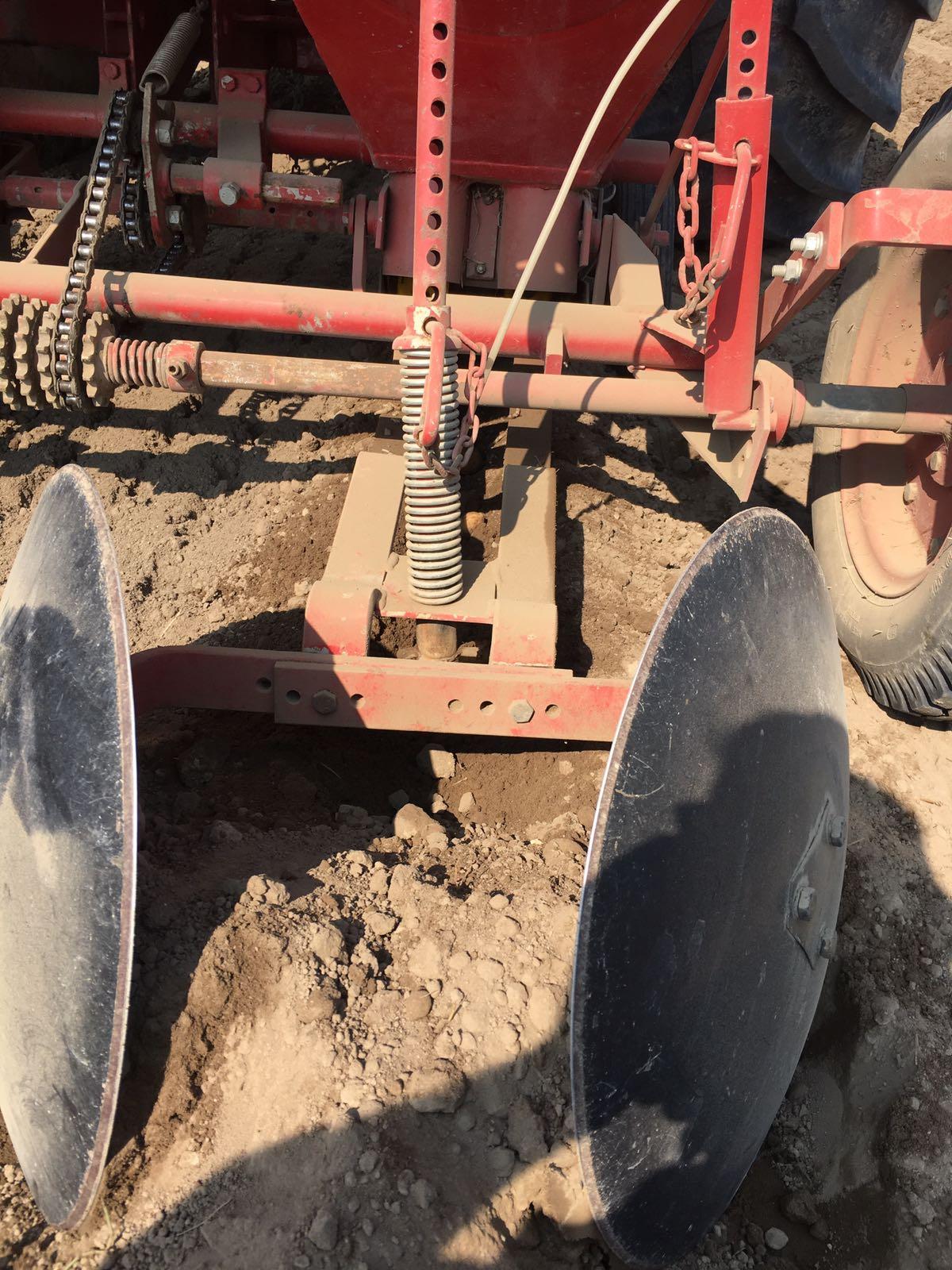 semina patate 28 marzo 2018 4
