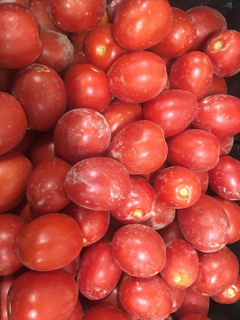pomodoro da salsa 2 agosto 2018